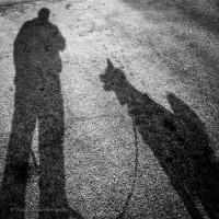 Essere naturali con il proprio cane